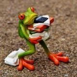 21-frog-13398921920-sma.jpg